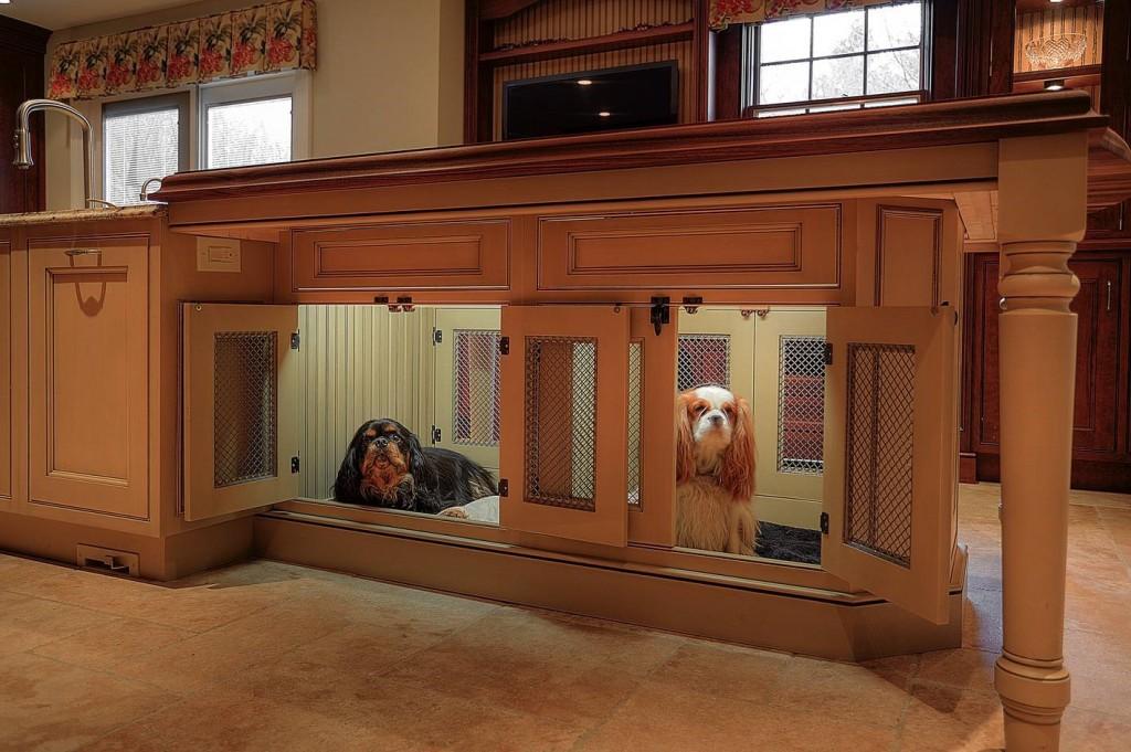 suns namas2